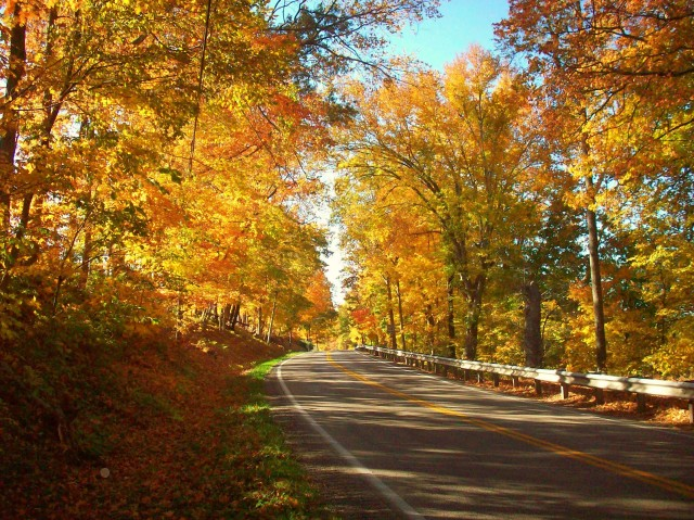 AUTUMNAL ROAD TO HODGENVILLE.